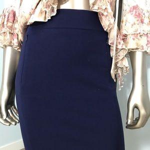 Diane Von Furstenberg Classic Blue Pencil Skirt